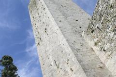 Veduta Torre dal basso
