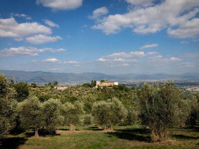 From Serravalle to Vinacciano